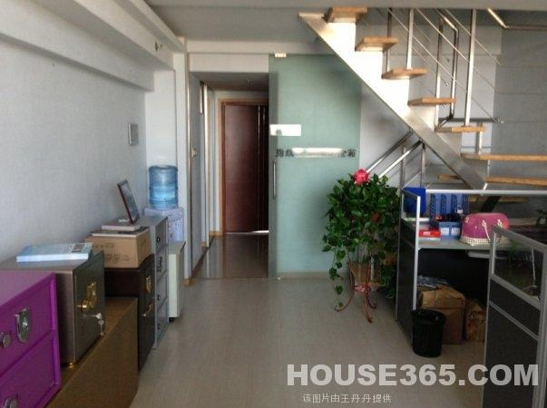 奥体东 嘉业国际城 开发商精装单身公寓 跃层 私密性 新城双学区