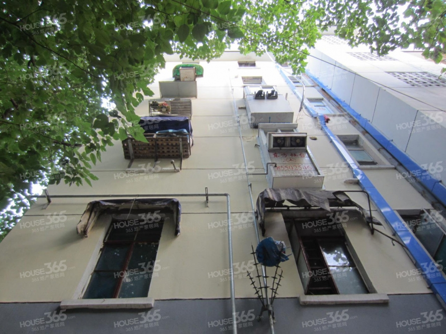 东妙峰庵小区2室1厅1卫56平方产权房精装