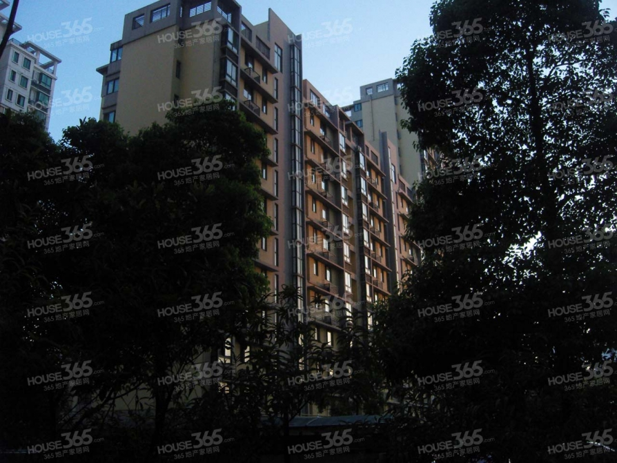 景尚名郡 多层带电梯洋房 科学大道地铁口300米 政务边不限购
