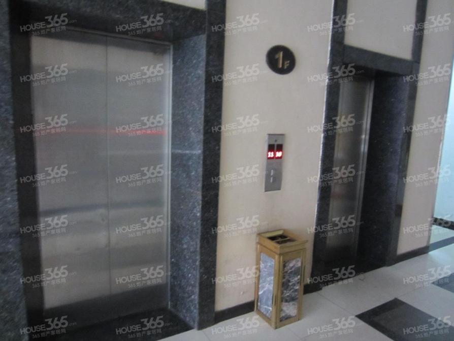 利奥 电磁炉 电路图