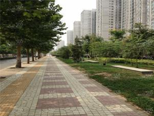 金泰假日花城实景图