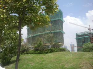 莱蒙水榭春天 兴隆大街近河西大厦 奥体中心精装公寓 押一付一