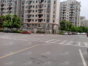 独栋商业性质 全明商铺 酒店 公寓等 业态不限