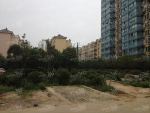 江宁岔路口双龙大道南方花园B组团1楼带院子采光无遮挡急