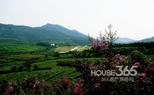 九龙山风景区南京