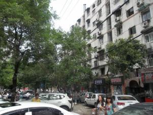珠江路 省电视台旁 丹凤街石婆婆巷里面 连家店 有院子 价