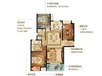 B1户型 2+1房2厅2卫116平