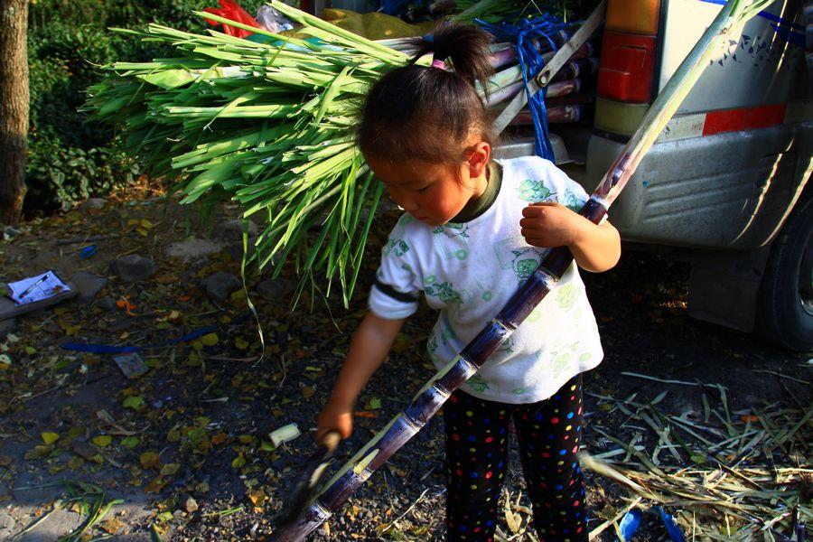 芜湖 妈妈/【城市播报员】帮妈妈卖甘蔗的小女孩【积分已发放】